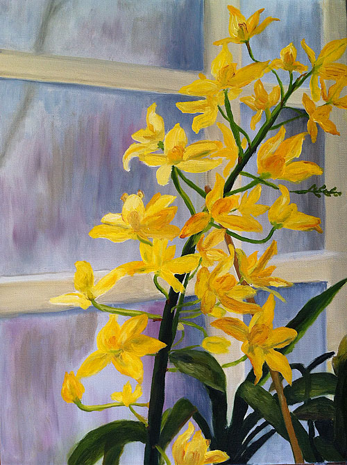 yellow orchids greenhouse window
