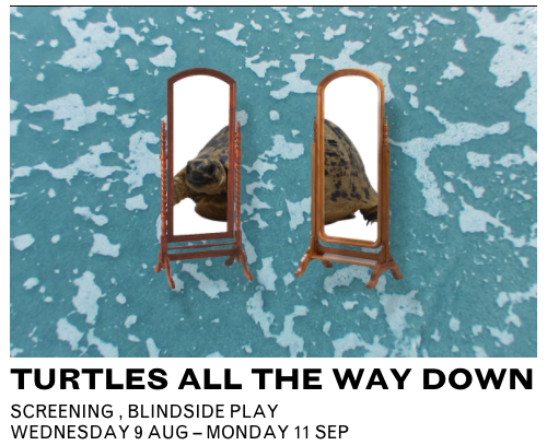 Turtles+All+the+Way+Down+at+Channelsfestival.png