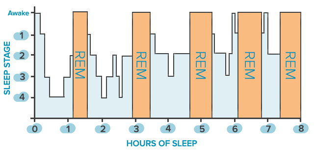 Figure source: Center for Sound Sleep