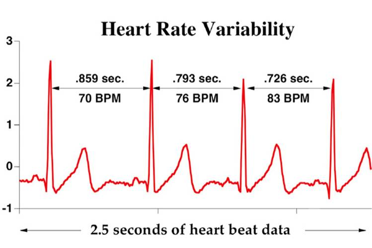 Image source:  HeartMath Institute