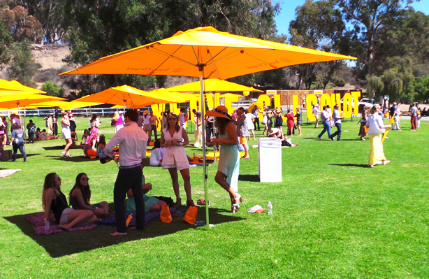 Veuve Clicquot Polo Game 2