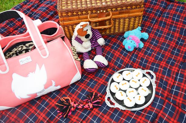 picnics and cupcakes