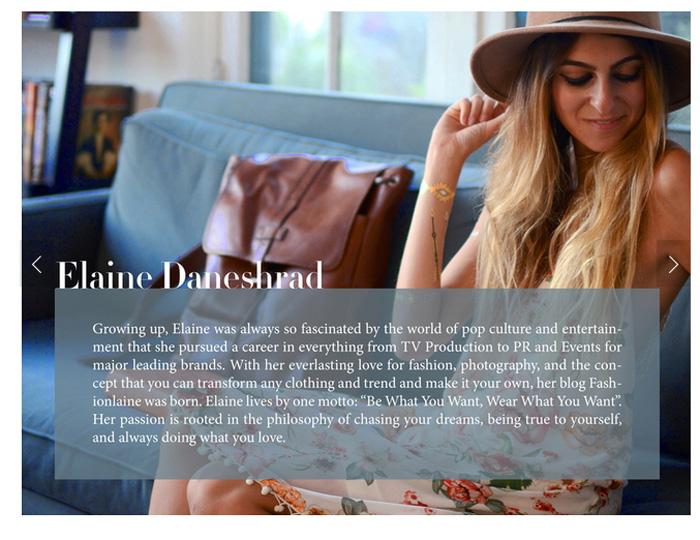 fashionlaine elaine daneshrad