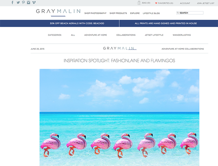 gray malin flamingos