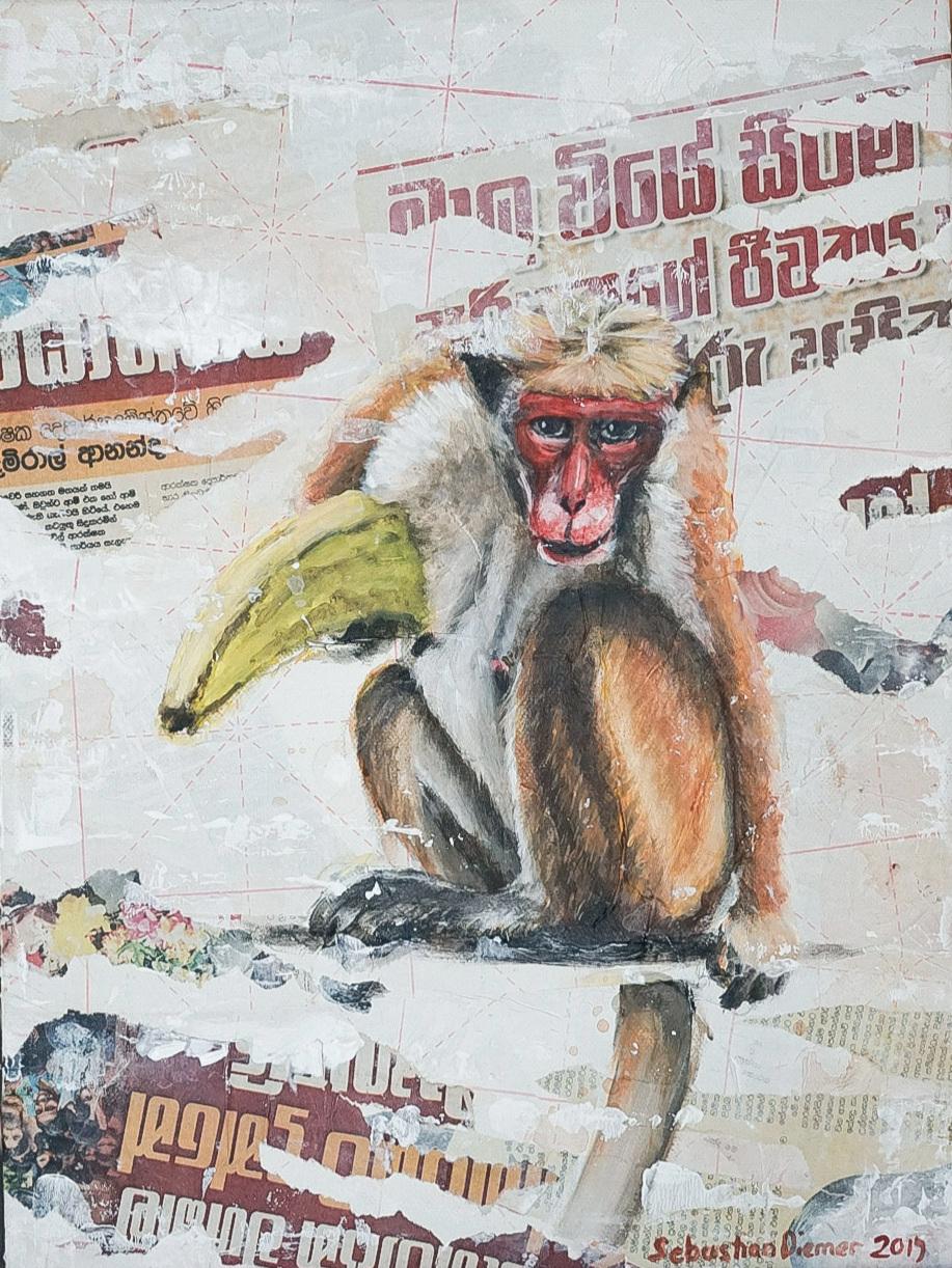 Monkey with bananna