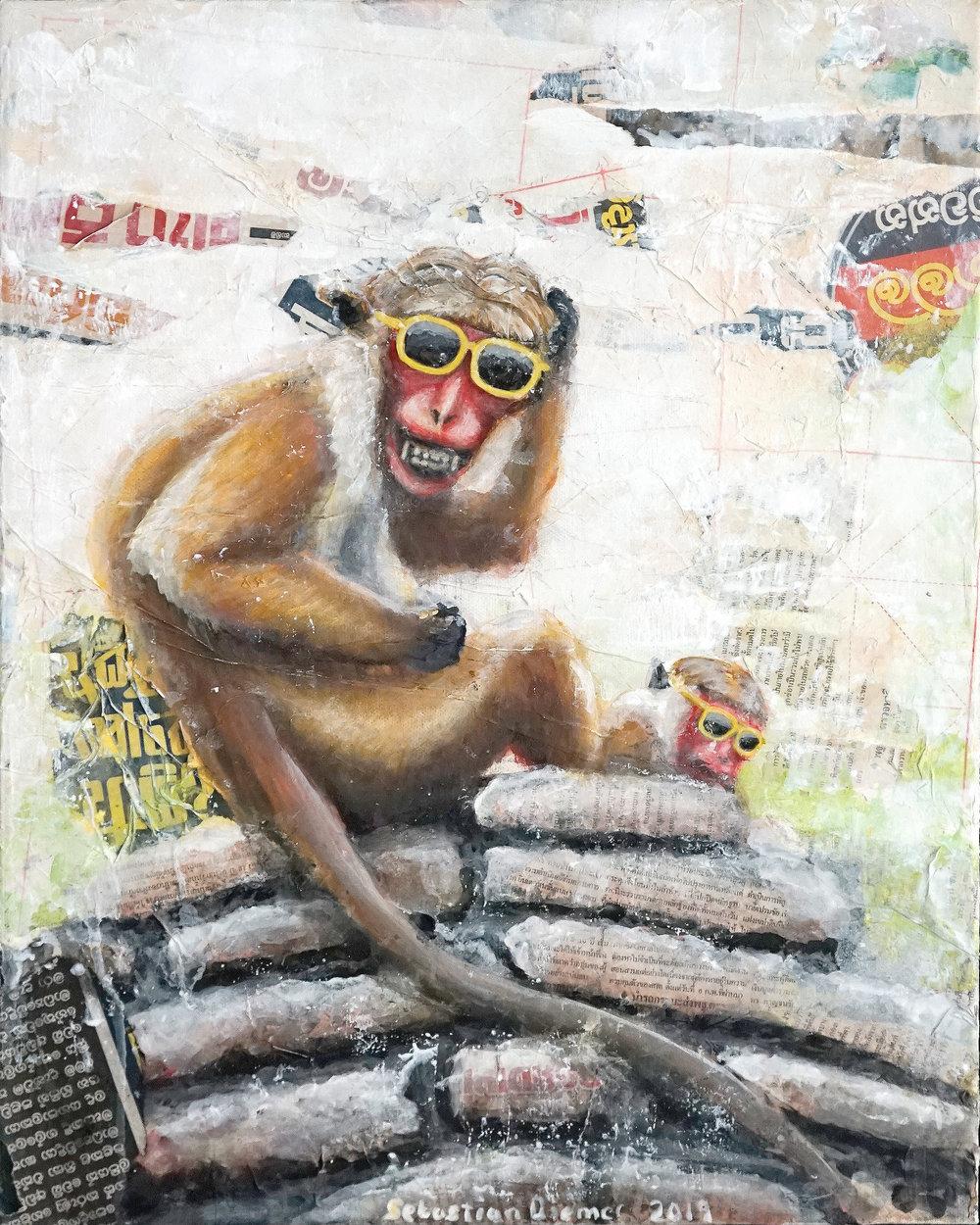 Monkey on the Rocks