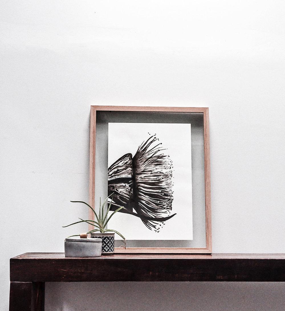 Wattle Flower.jpg