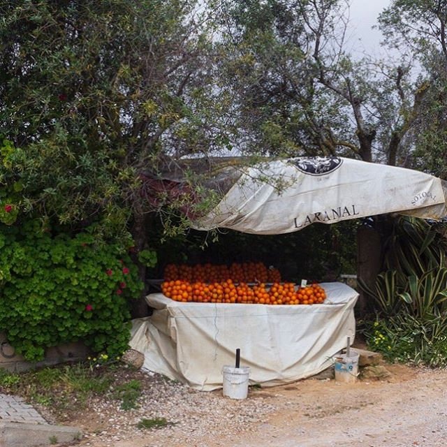I had wanted to do a photographic road trip for some time. So here is a sneak preview of my latest exhibition - #The Algarve #Beyond the Beach  #portugal #roadtrip #photographic #exhibition #onlinestore #interiordesign #orangestall  #algarvetourism  http://ow.ly/2eAY30orDcM