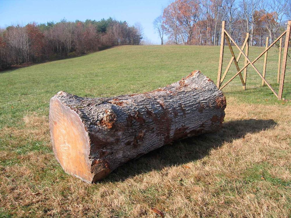 sawmill-selects-499.jpg