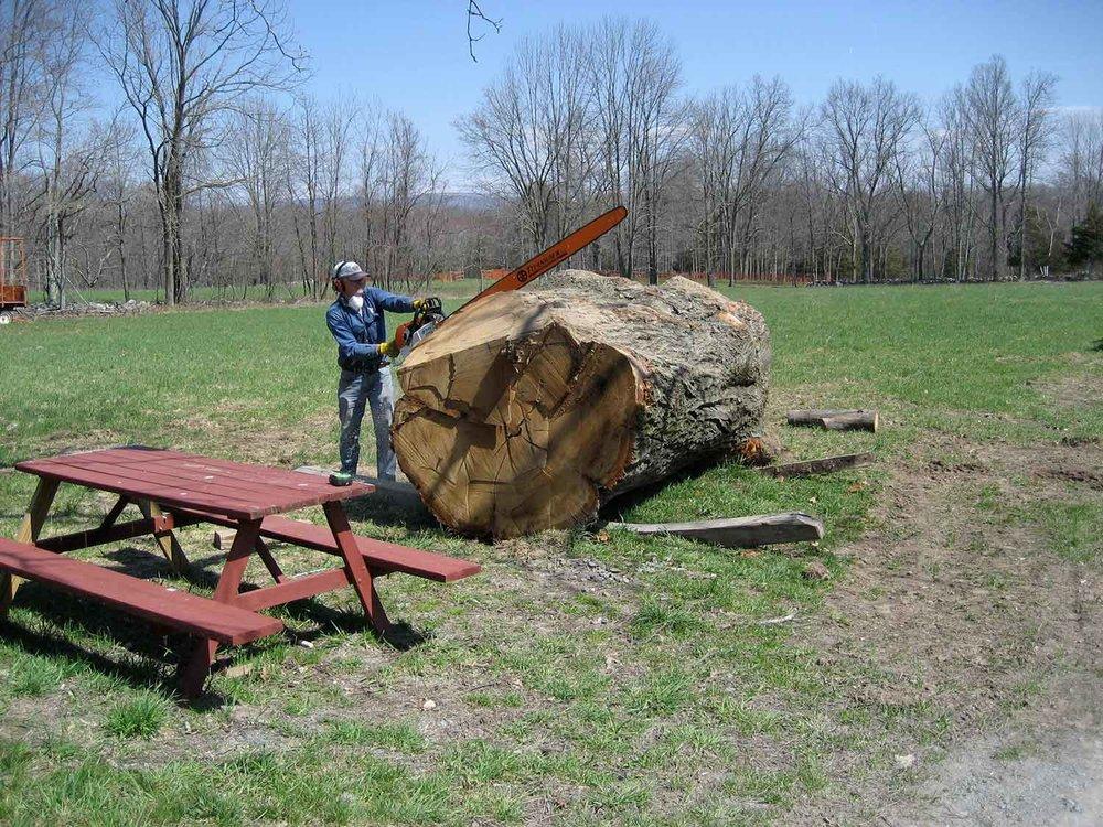 sawmill-selects-3207.jpg
