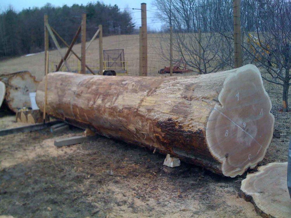sawmill-selects-6646.jpg