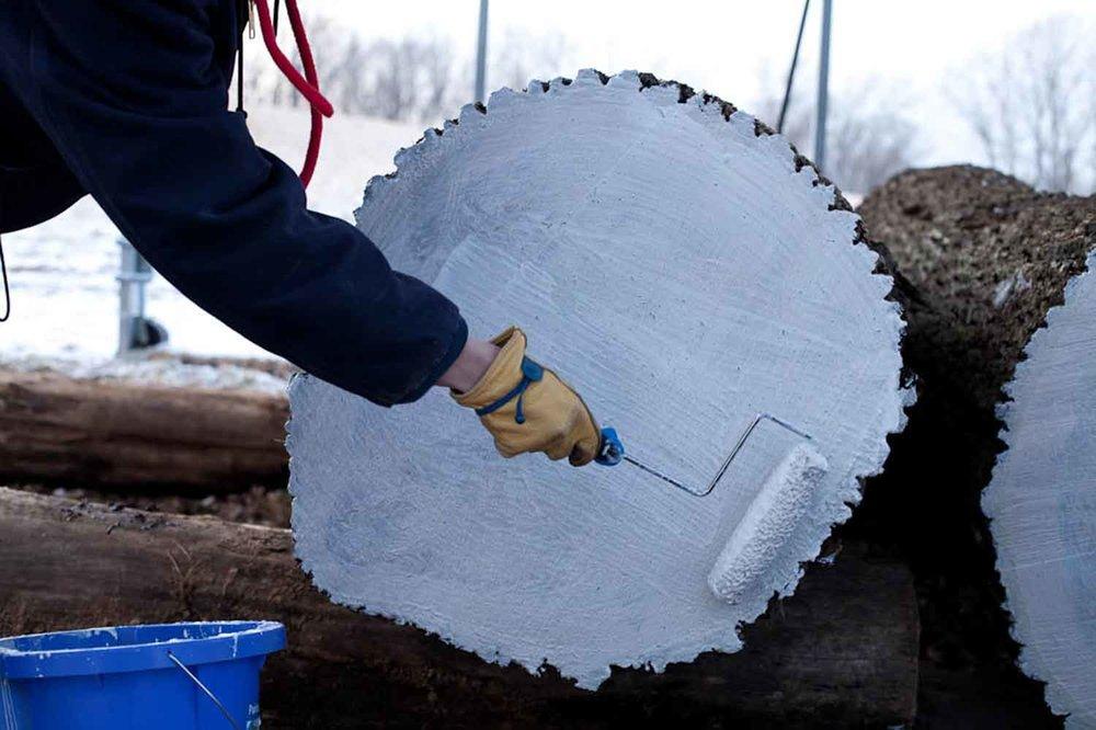 sawmill-selects-7645.jpg