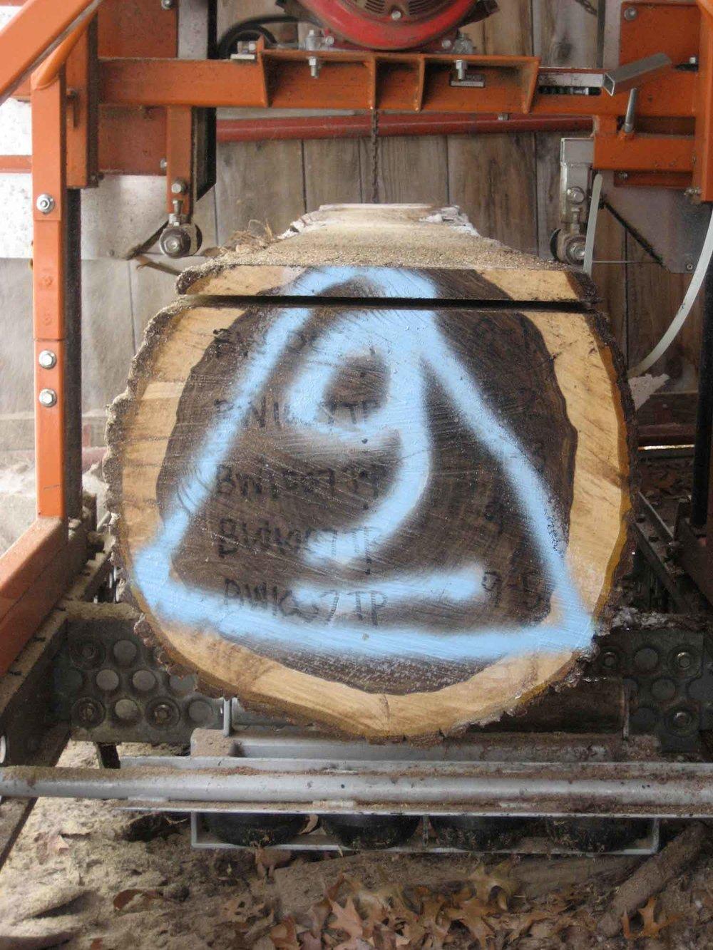 Logs + Sawmilling
