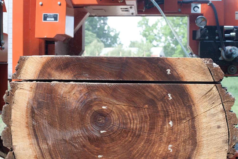 wickham-sawmill-heuer-0570.jpg