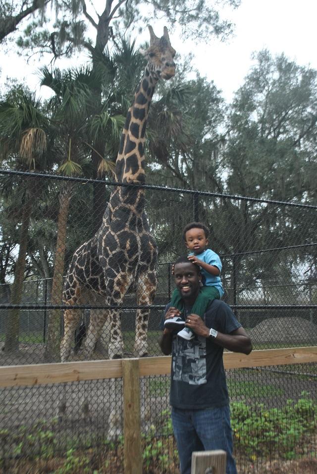 central florida zoo and botanical gardens _ 2689093