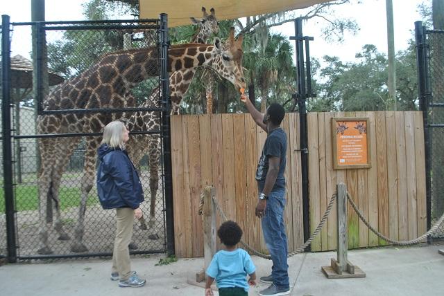 central_florida_zoo_and_botanical_gardens_8899