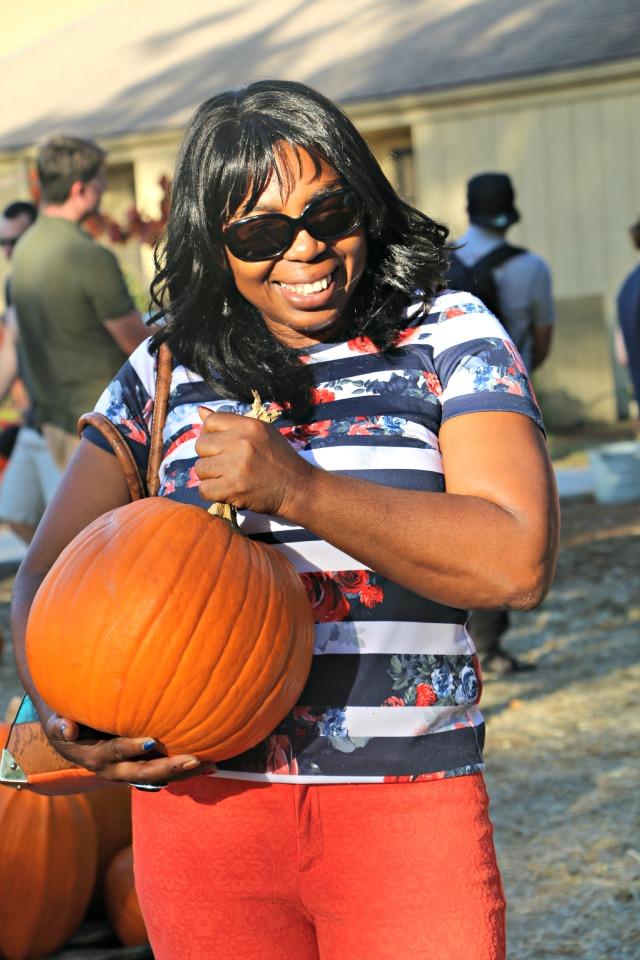 the_pumpkin_patch_123455