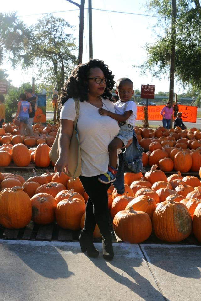 the_pumpkin_patch_177772