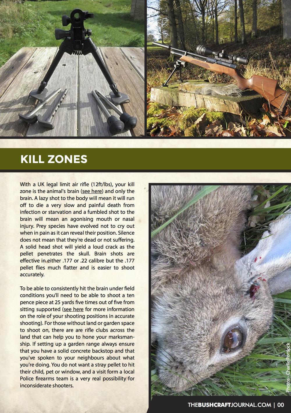hunting p4.jpg