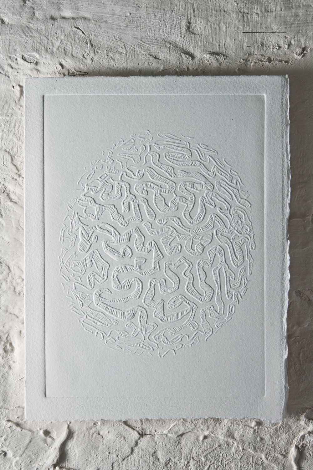 """Brain Coral"" Blind embossing 29.5 x 24 cm 2013"
