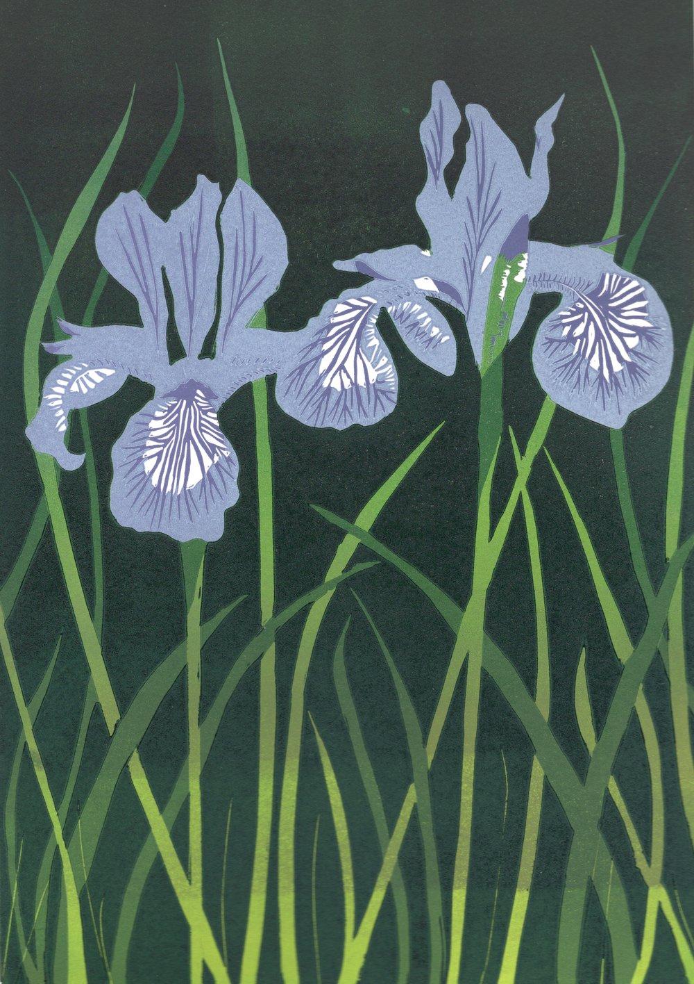 Irises   Linocut