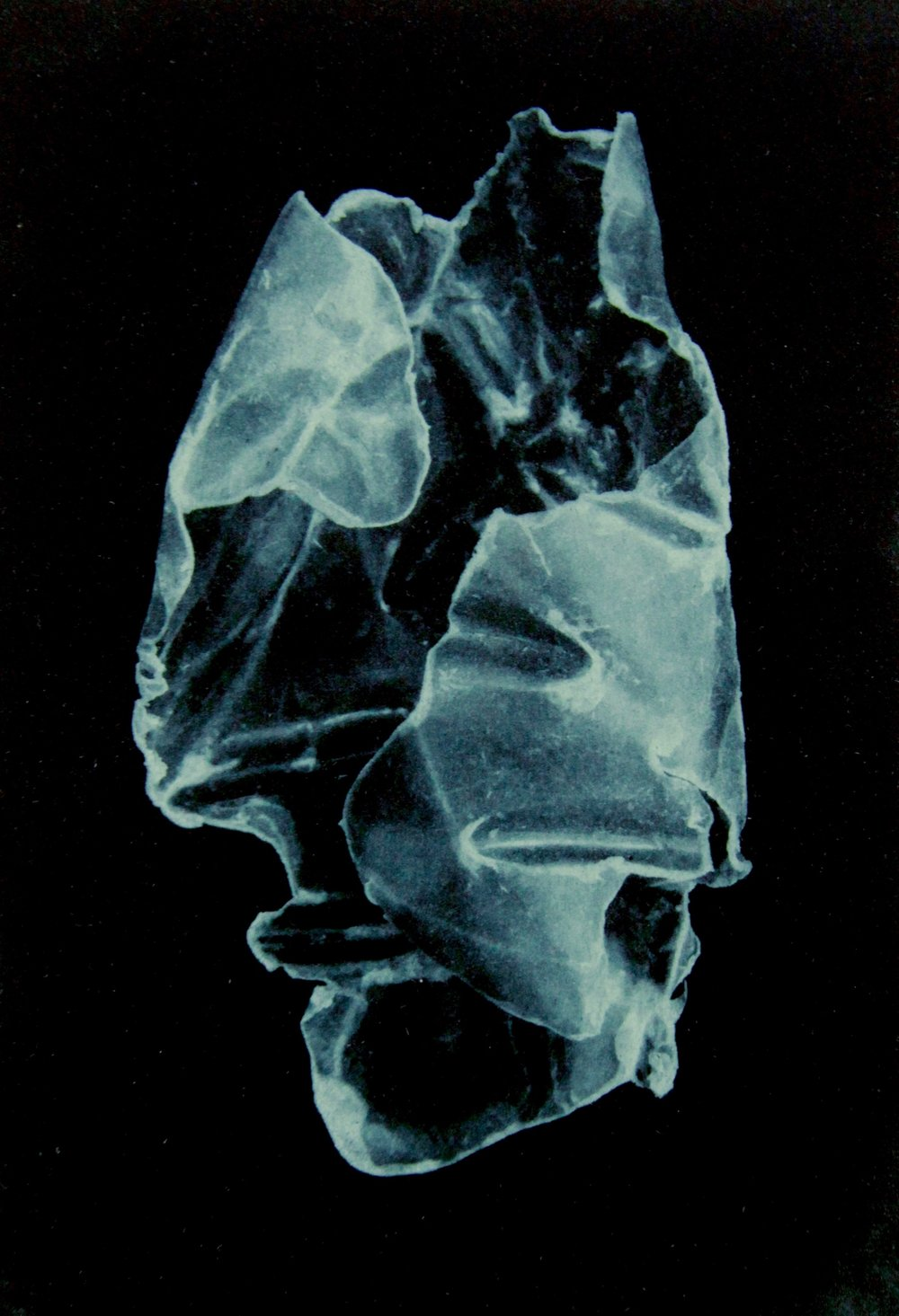 Pelagic Plastic   Photopolymer etching