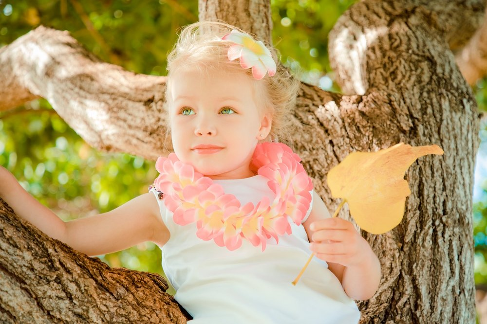 child with leaf in tree in hawaii park