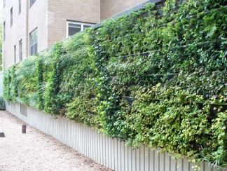 benefits-of-green-walls-image-3.jpg