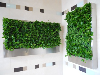 benefits-of-green-walls-image-1.jpg