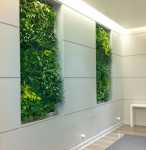 benefits-of-green-walls-image-4.jpg