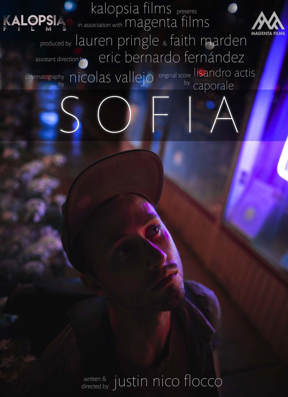 SOFIA_POSTER_2017_Small.jpg