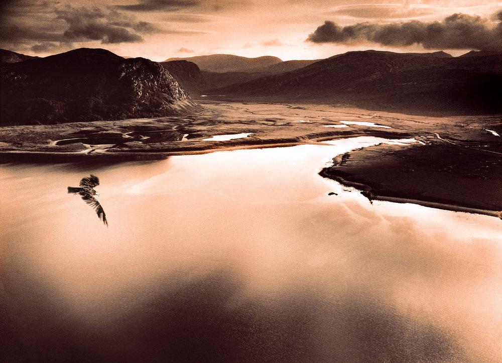 slrwaitrose Salmon600dpi.jpg