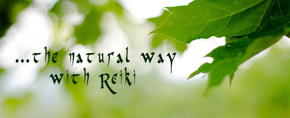the-natural-way-with-reiki.jpg