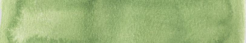 1- Website Green Bar.png