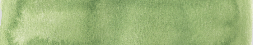 1- Website Green Bar.png