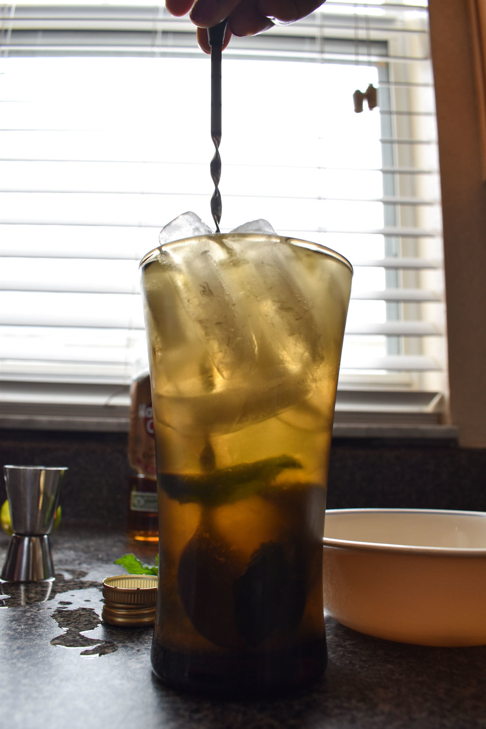 mojito with dark rum-22.jpg