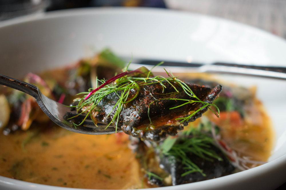 Shrimp & Fennel Agnolotti Nero Tapa Toro