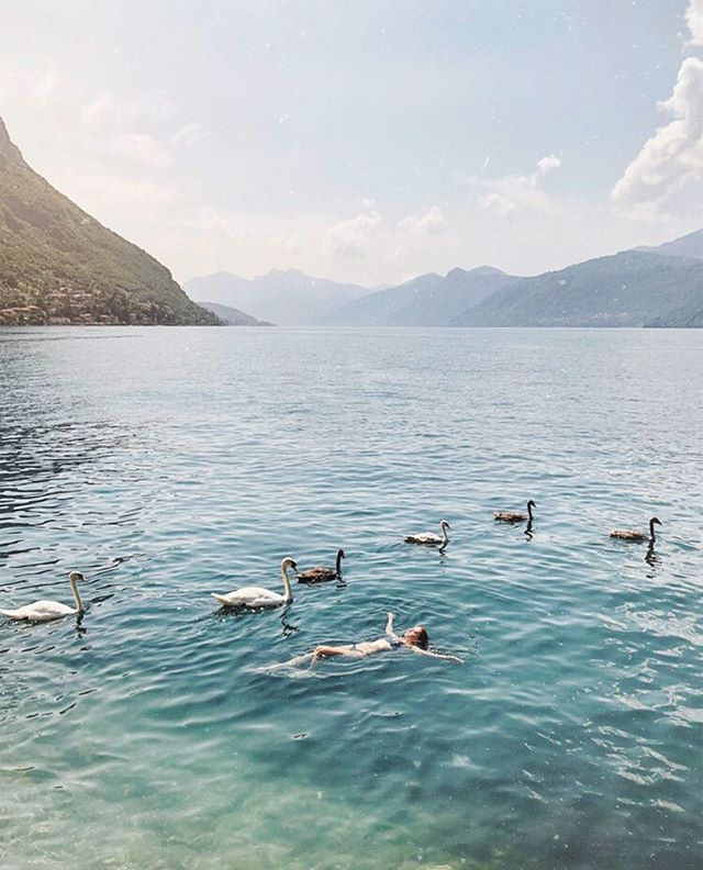 If someone were to ask you, what was one of the most magical moments of your life? 〰  While mindlessly floating out into the lake, a whole family of swans surrounded me and I didn't even realize until it was almost too late; we didn't have enough time to grab the camera, regardless, it was like straight out of a dream ✨