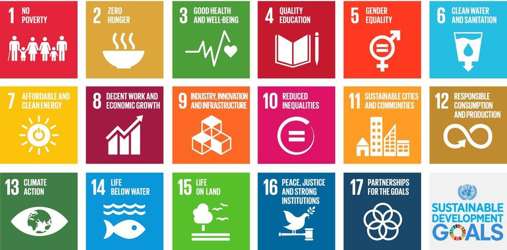 The UN's 17 Sustainable Development Goals