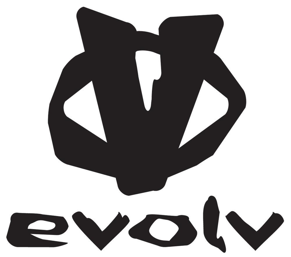2011_evolv.jpg
