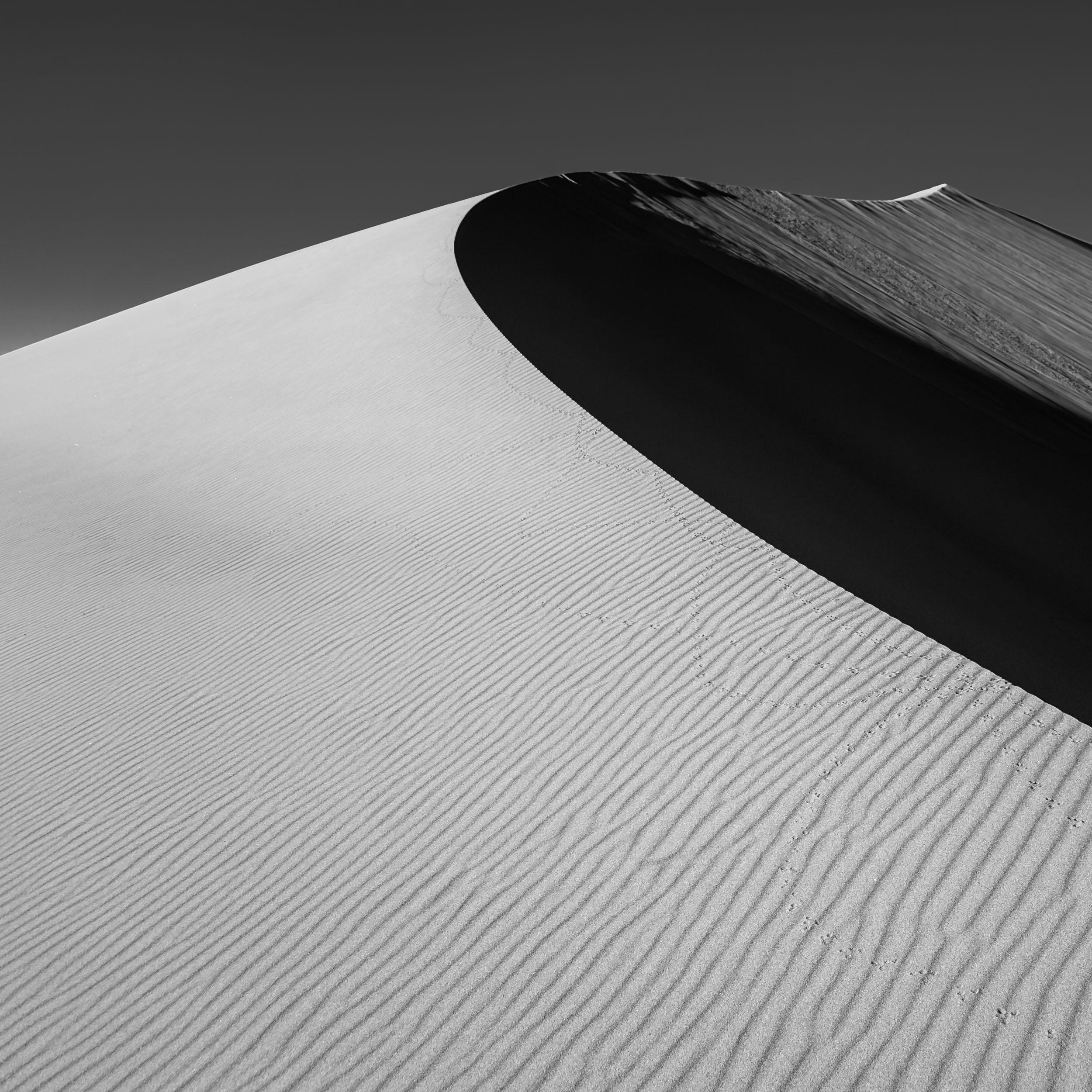 Dunes-6.jpg
