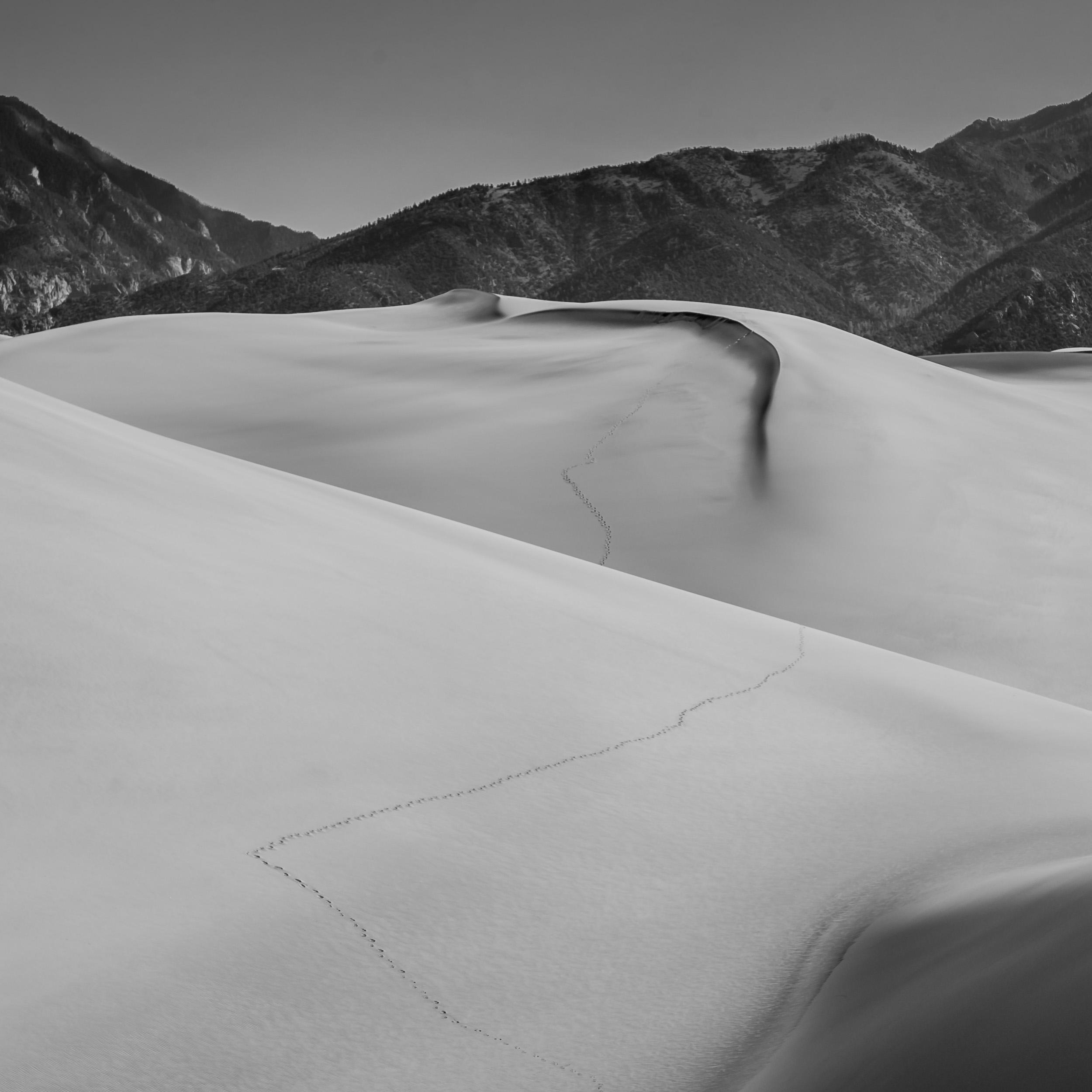 Dunes-10.jpg