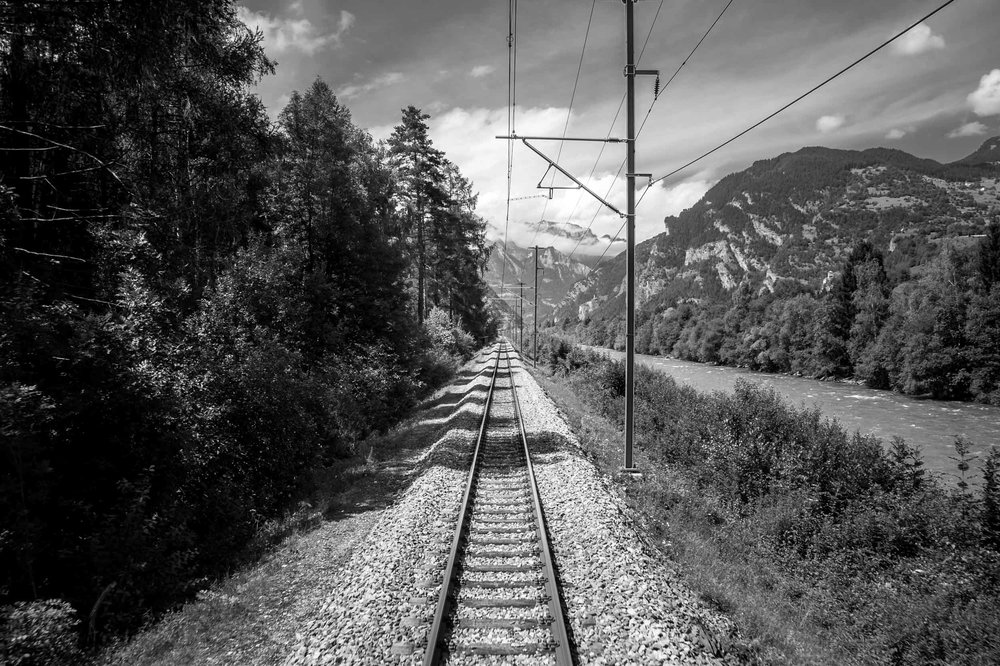 Swiss-1.jpg