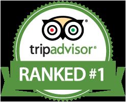 trip advisor rating