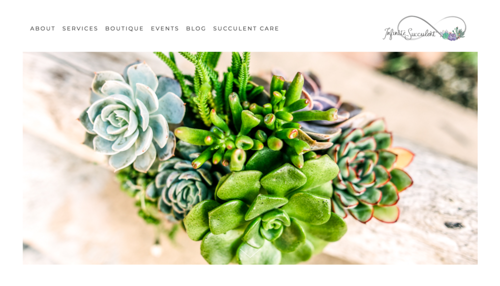 screenshot-www.infinitesucculent.com-2018.12.12-14-52-12.png