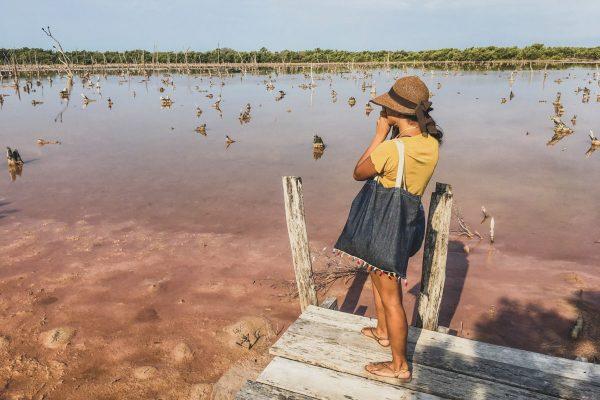 201811_gabaccia_mangrovesofdzinitutn_strandedonland_gab001-e1542006215948-600x400.jpg