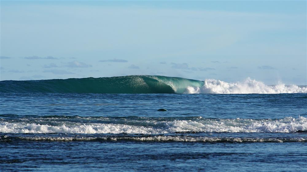 KabuNohi_Surf_Indicators_Nias (10).JPG