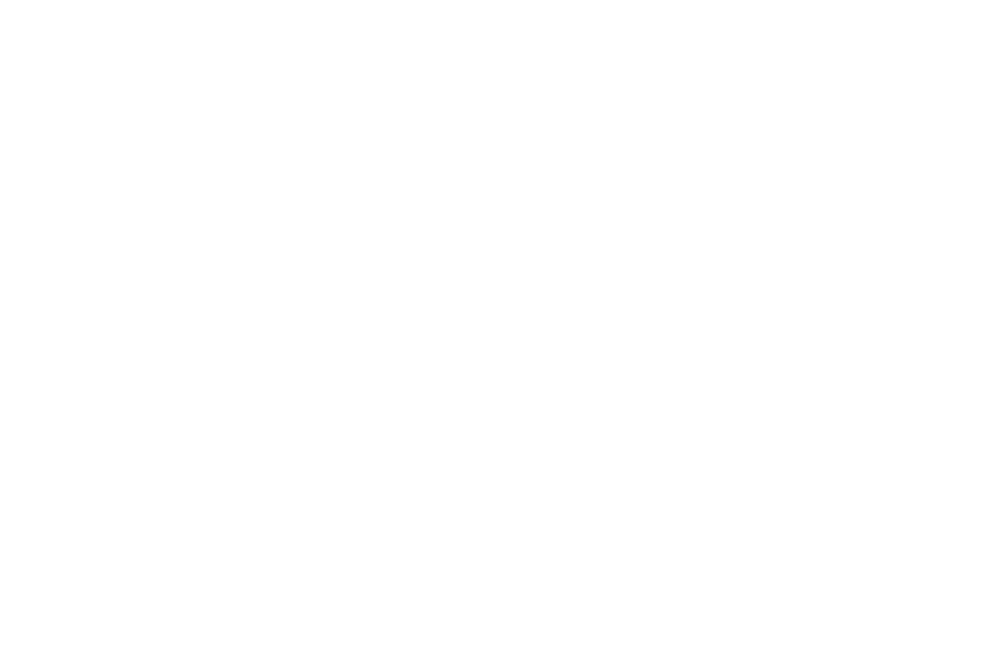 NVFF2017_Official Selection_Laurel_White.png