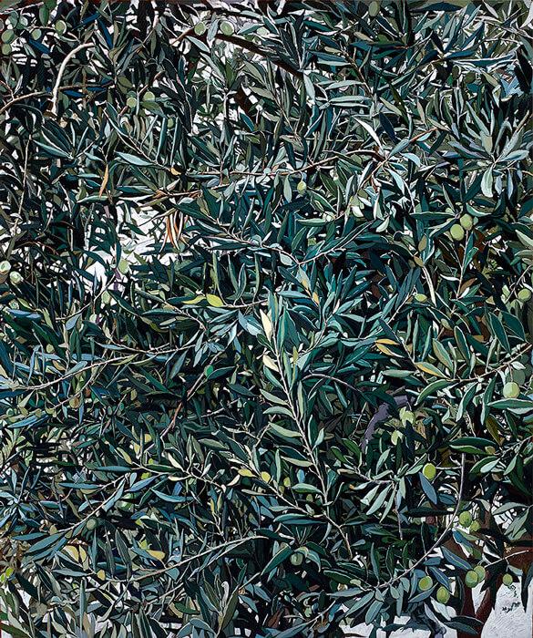 Ain Karem - mirto - 'Magnificat' - marzo 2015 - Olio su tela di lino, cm 100x100
