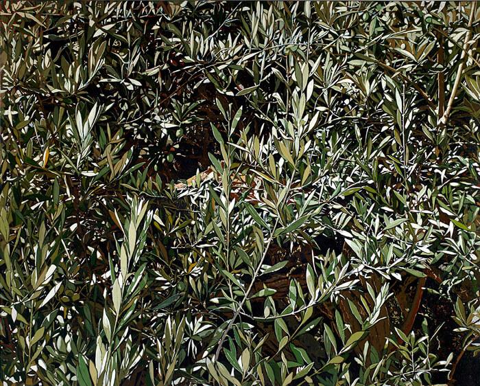 Op. 725 Gerusalemme Getsemani gennaio 2016 olio su tela di lino cm 100x120
